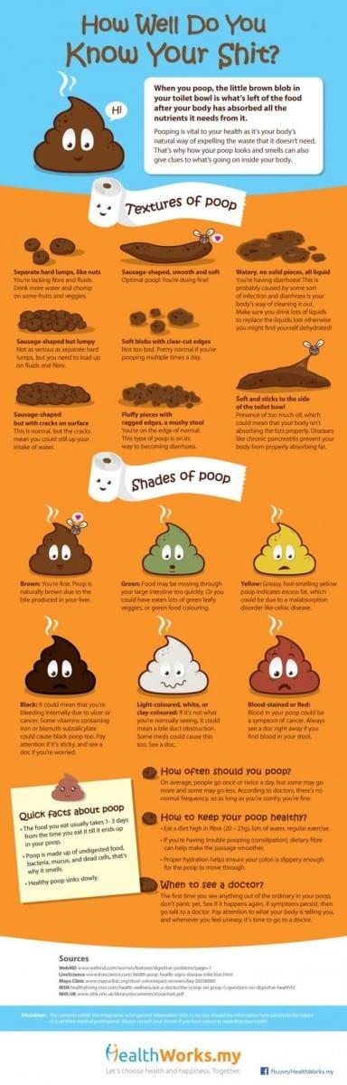 Bristol Poop Chart-healthworks-poop-infographic-700x2188(1)