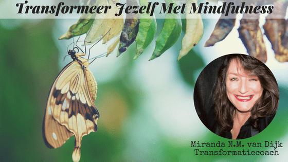 Transformeer Jezelf Met Mindfulness Met Miranda N.M. van Dijk