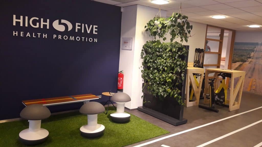 Viva la Vive, High Five Health Promotions, Duurzame Inzetbaarheid, Vitaliteit